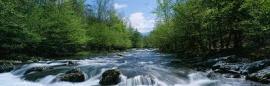riverfree