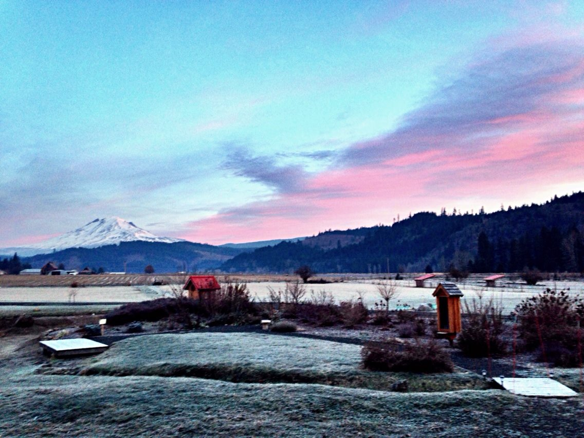 Dawn at Trout Lake Abbey, at the base of Mt. Adams in Washington state.